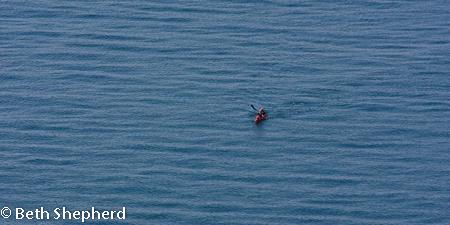 Paddling in Puget Sound, kayak