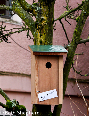 For lease birdhouse