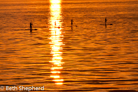 Paddleboarders at sunset