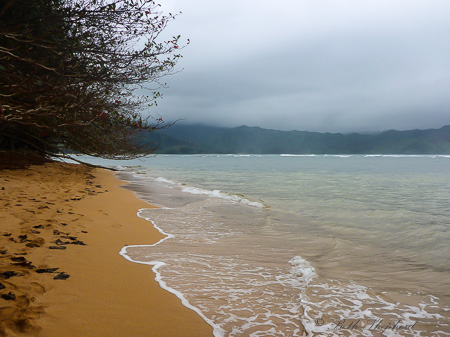Beach by Hanalei Bay