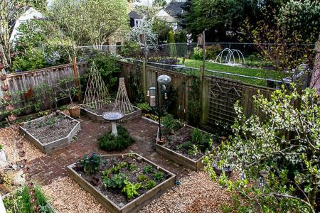 garden now