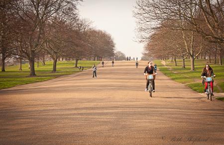 Kensington Garden road