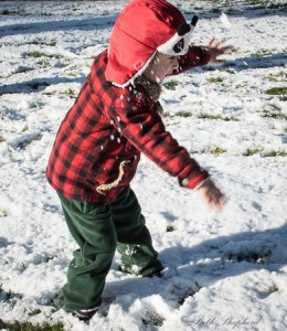 Snowball 3