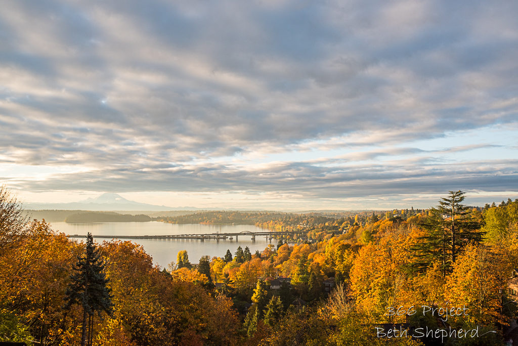 fall morning on Lake washington