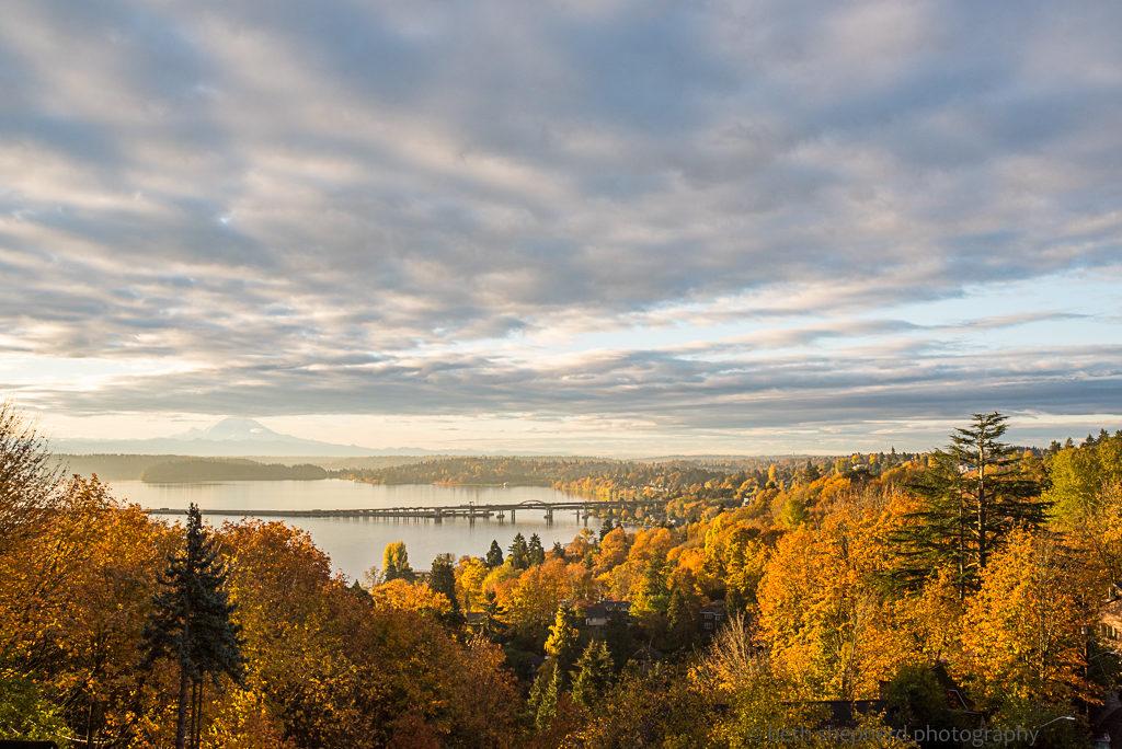 fall morning in Seattle