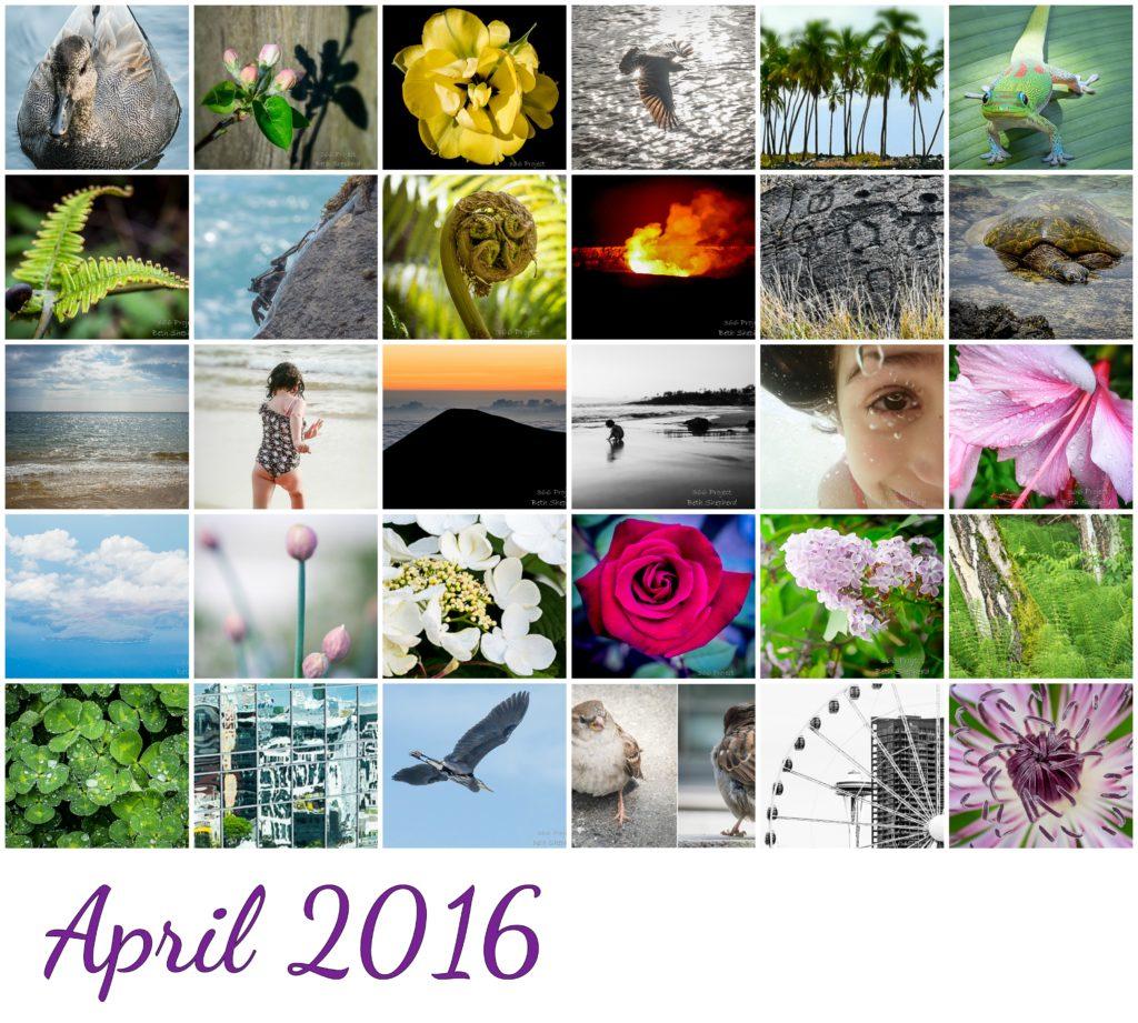 April 2016 photos