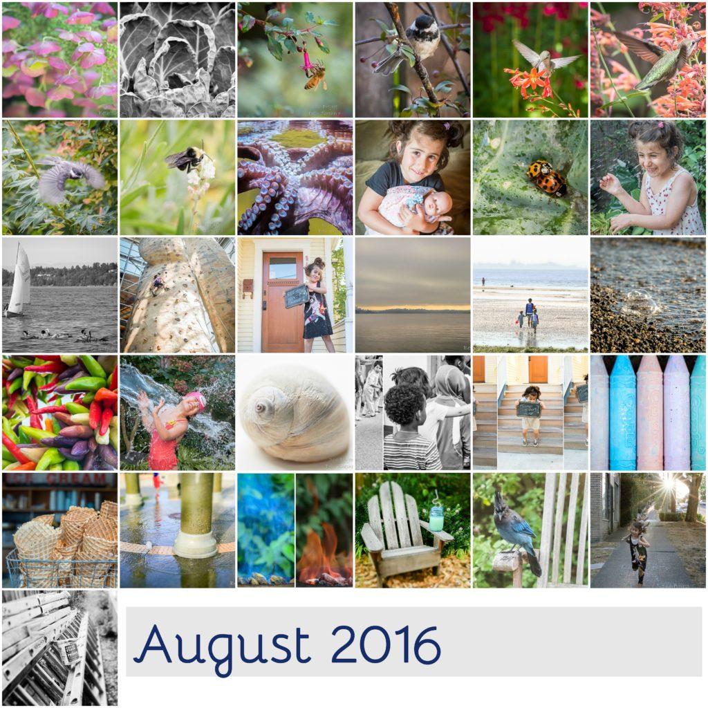 August 2016 photos
