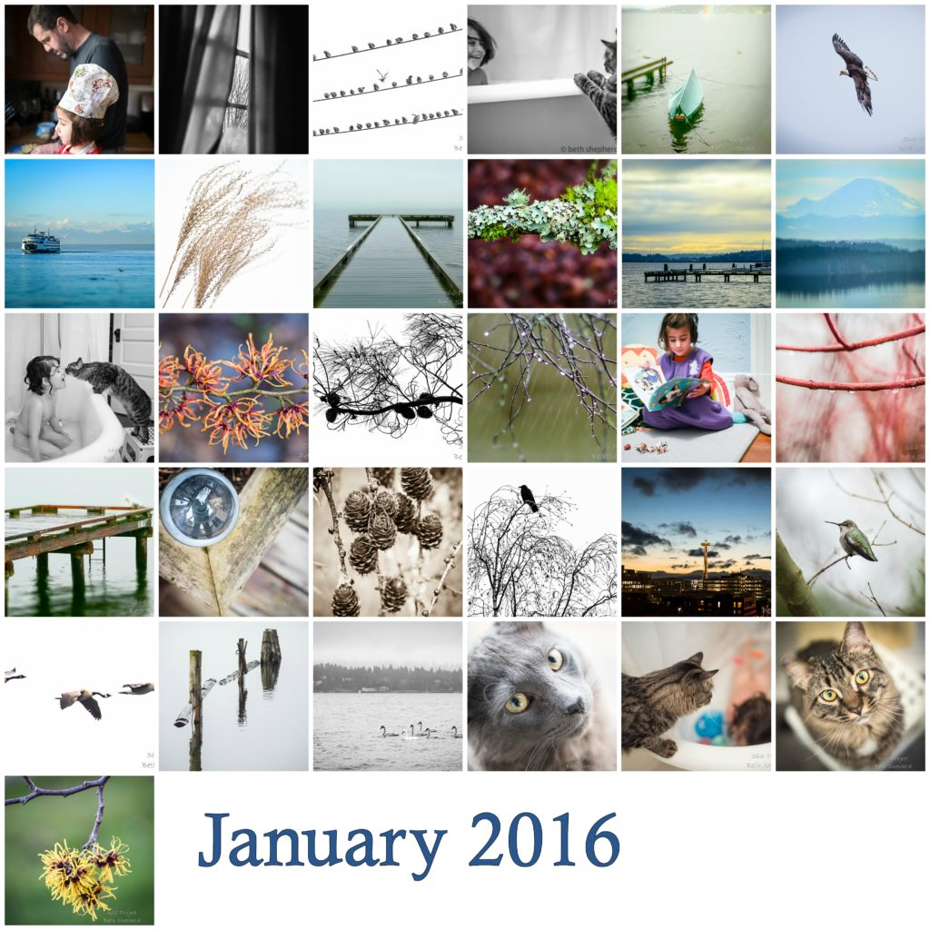 January 2016 photos