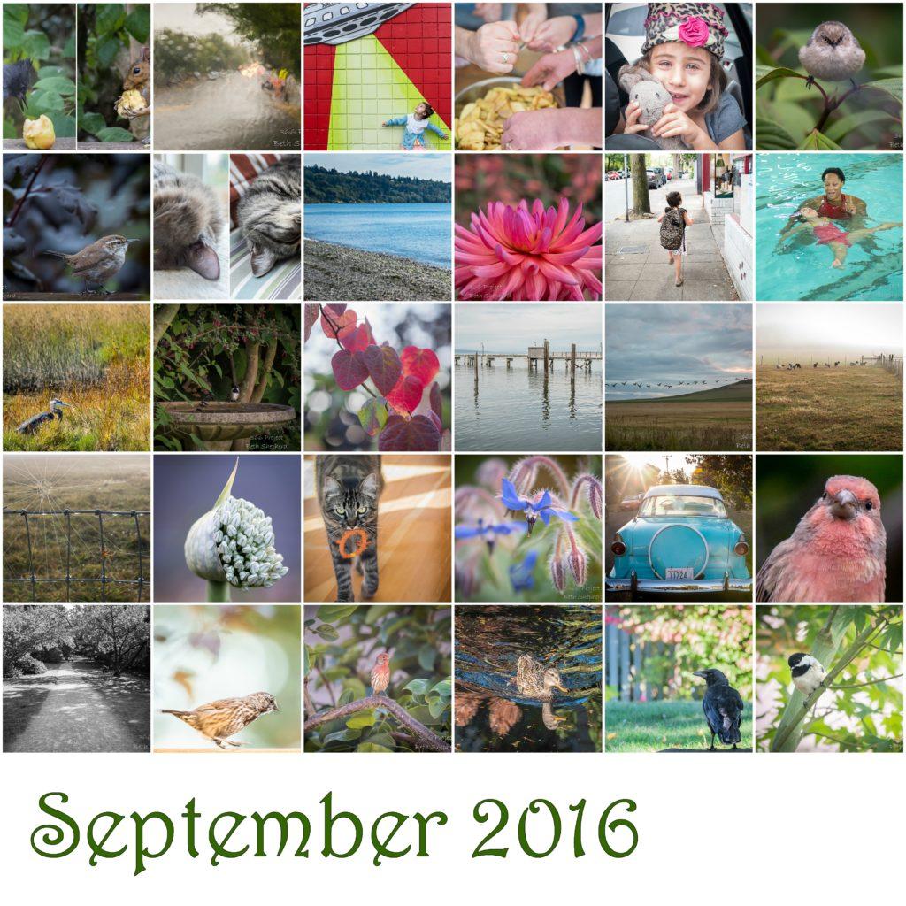 September 2016 photos