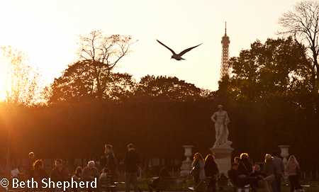 People aglow at the Tuileries, Paris, France