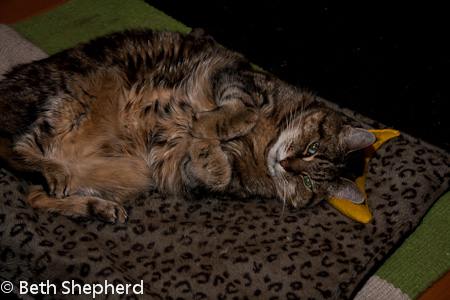 Maggie with her banana