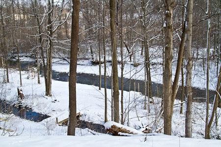 Fayetteville Bird Preserve streams and bridge