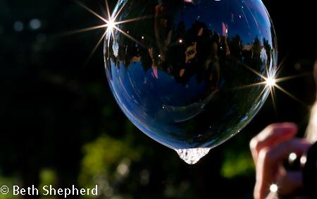 Volunteer Park photos of bubbles