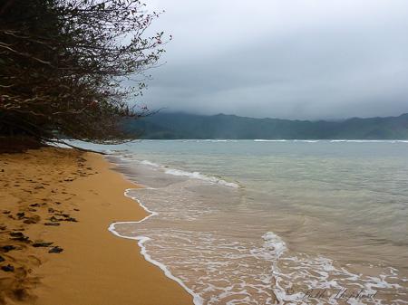 Beach by Hanalei Bay