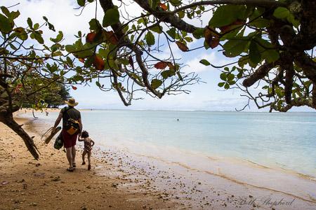 Big Papa and Baby Bird at Anini Beach Kauai