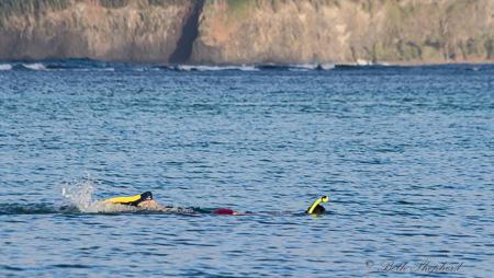Big Papa snorkeling at Anini Beach