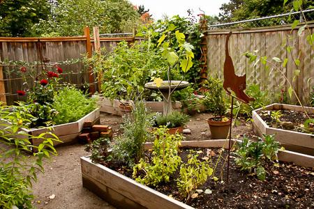 Garden before bricks