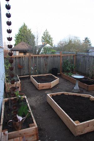 New planter boxes 4