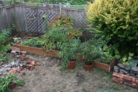 Plants in temporary beds
