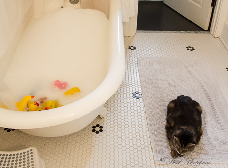 Bathing assistant