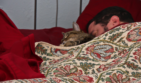 In bed with our cat