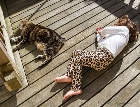 Cat and girl on the deck