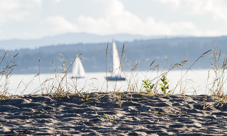 Dunes and boats