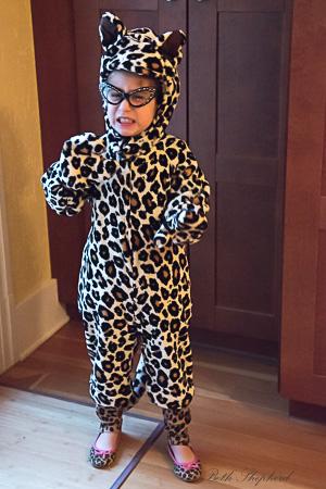 Cheetah chick