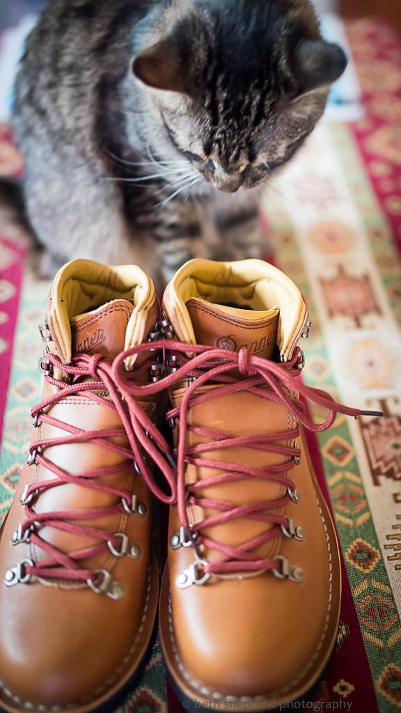 Danner Mountain Pass Rio boots