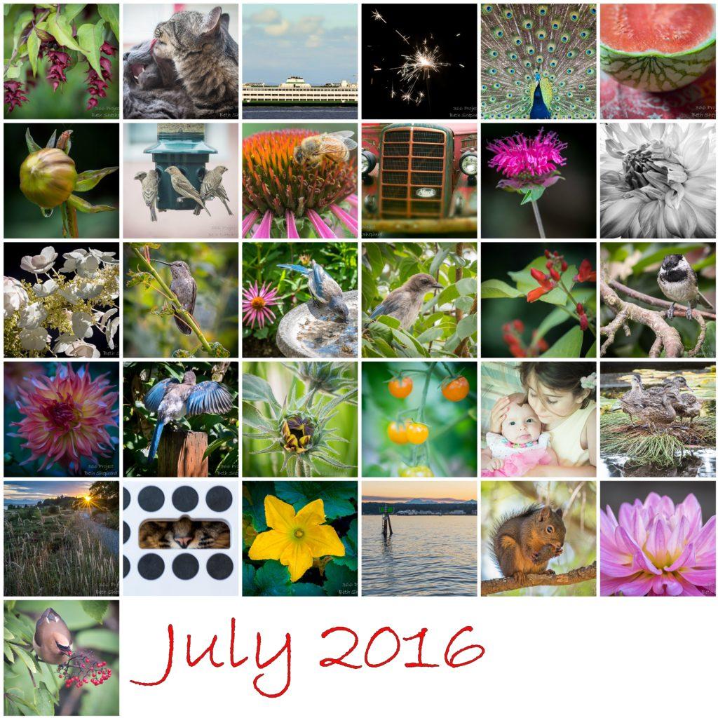 July 2016 photos