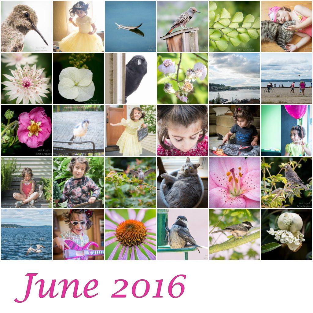 June 2016 photos